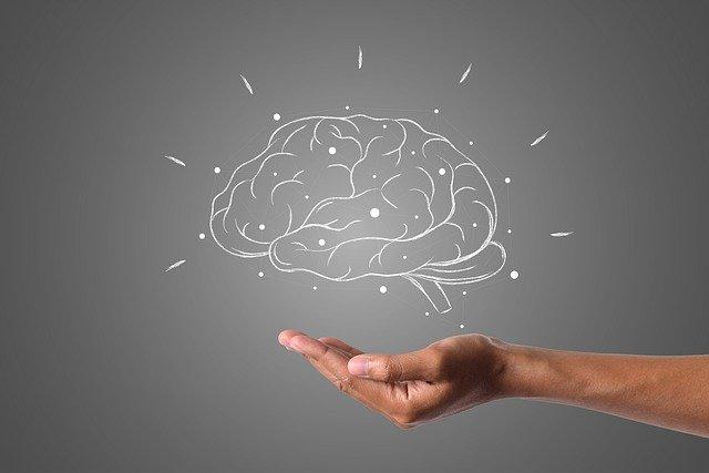Эксперт рассказал о легких способах улучшить работу мозга