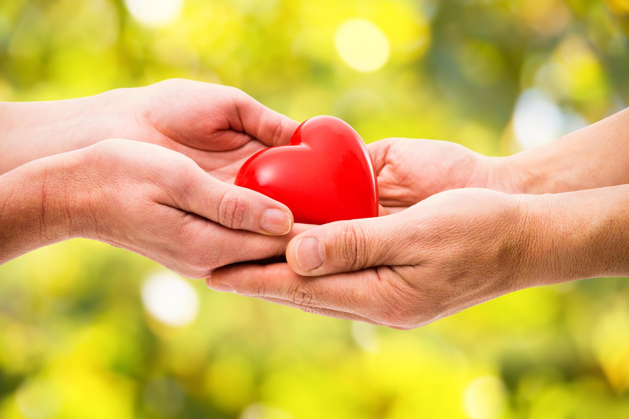 В Севастополе отпразднуют День милосердия и благотворительности