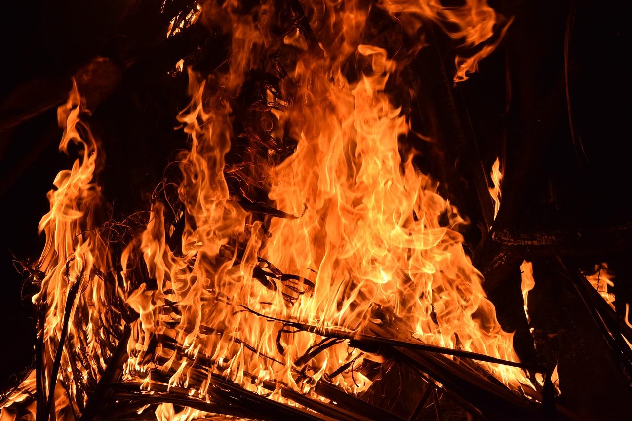 В Крыму с начала года в пожарах сгорело почти 100 гектаров лесов
