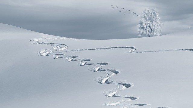 Синоптики прогнозируют снежную зиму в Крыму