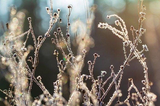 Погода побалует крымчан теплом перед похолоданием (прогноз на 28 – 30 октября)
