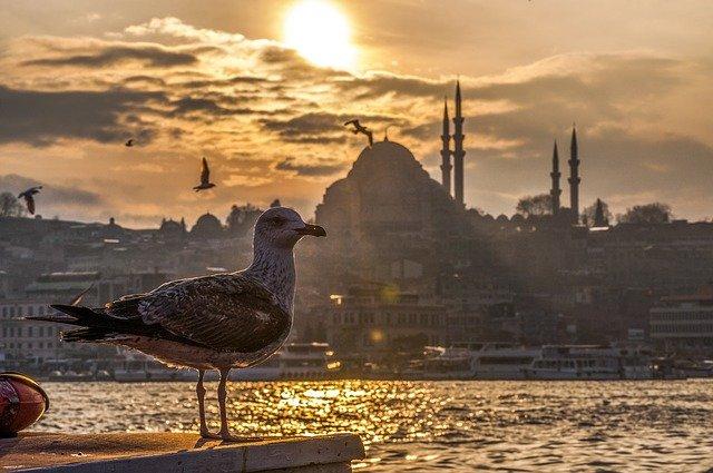 Турцию предостерегли от вступления в антикрымский союз