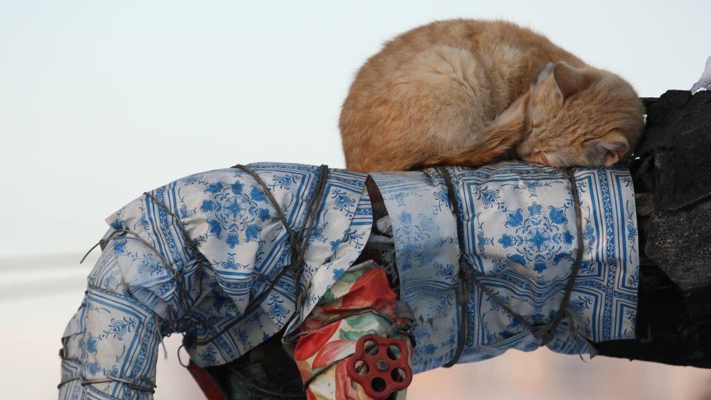 Изношенность крымских теплотрасс измерили замерзшими котами