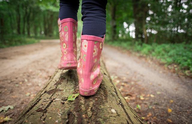 В МЧС рассказали, что делать, если ребенок потерялся в лесу