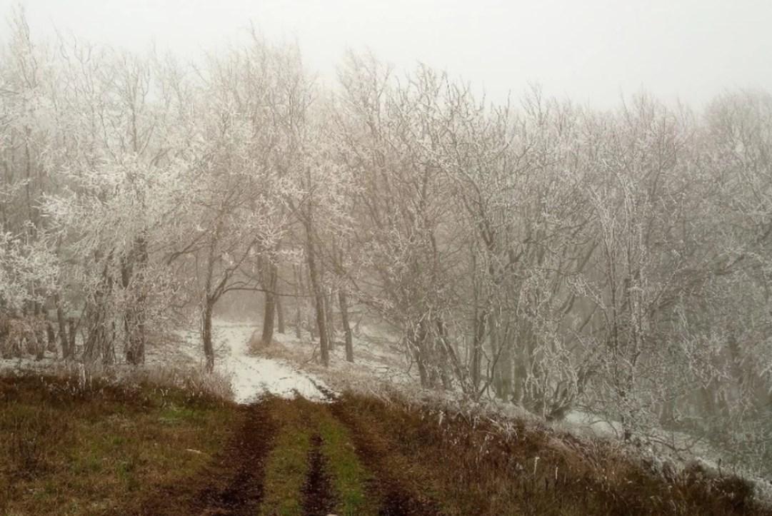 В Крымских горах выпал первый снег (фото)