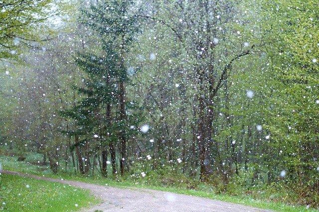 Дожди со снегом ожидаются в Крыму (прогноз погоды)