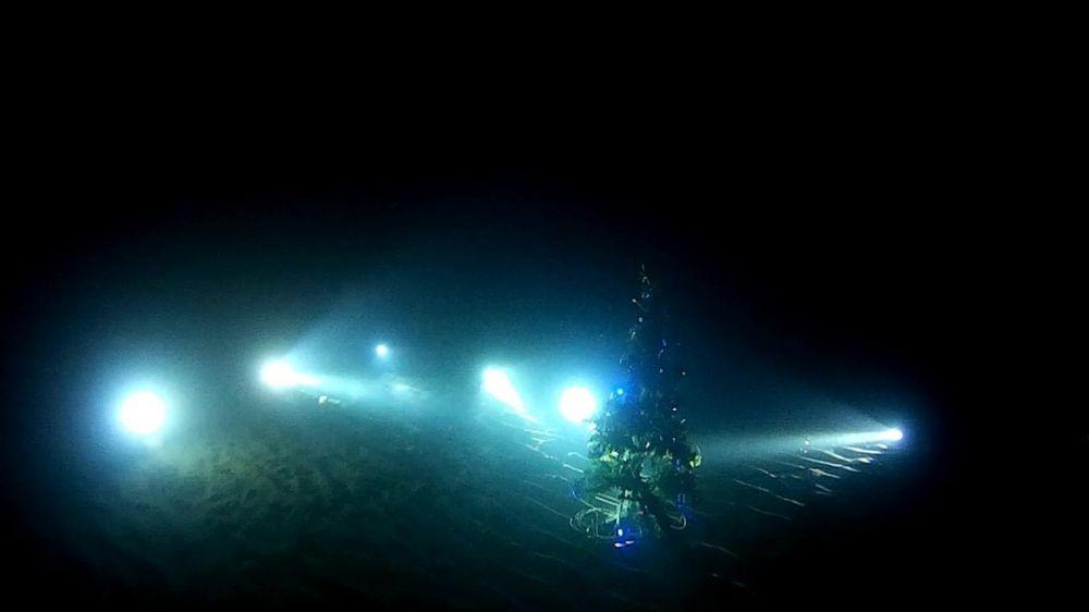 Крымские дайверы установили елку на морском дне