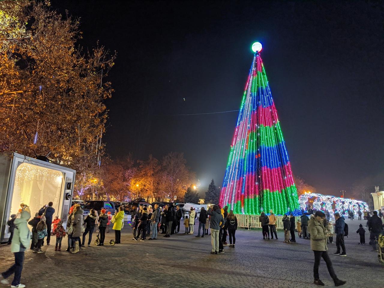 В Севастополе зажгли огни главной елки
