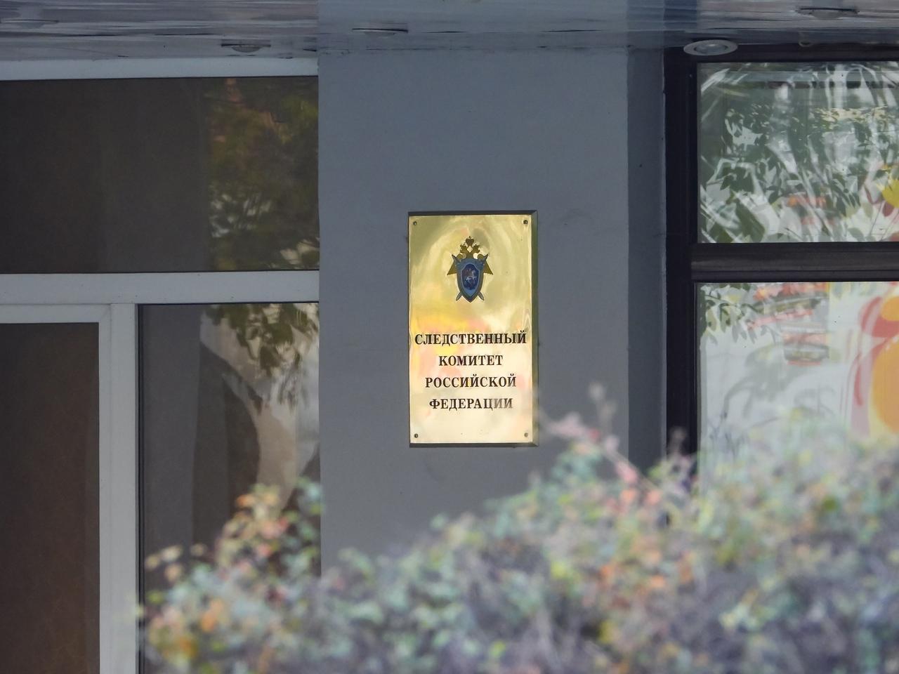 Следком проверит информацию об изъятии детей из многодетной семьи в Крыму