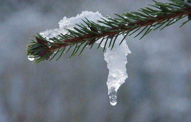 Аномальные морозы покинули Крым