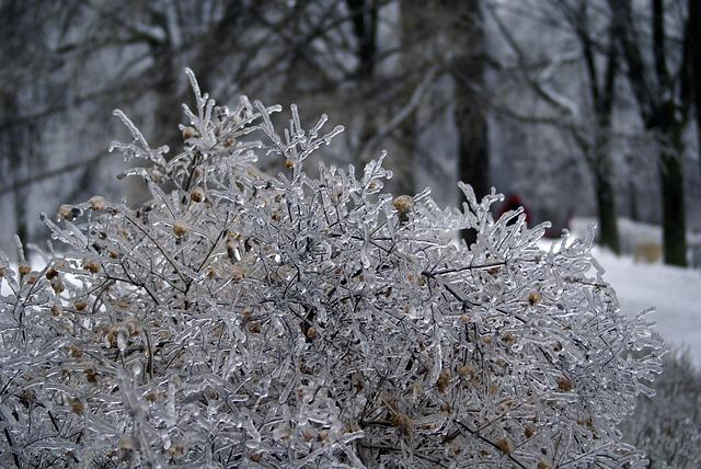 Ледяной дождь ожидается в Севастополе в ближайшие сутки
