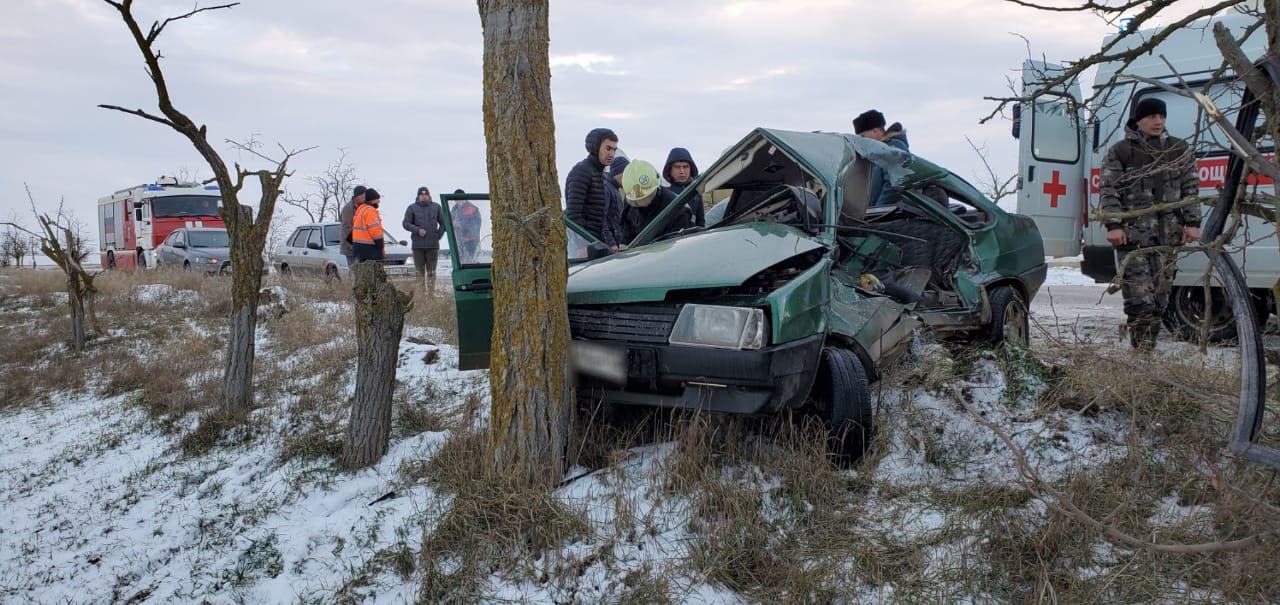 Два человека пострадали при столкновении ВАЗа с деревом в Крыму