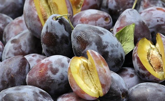 В Севастополе на сливовых деревьях появились первые плоды (фото)