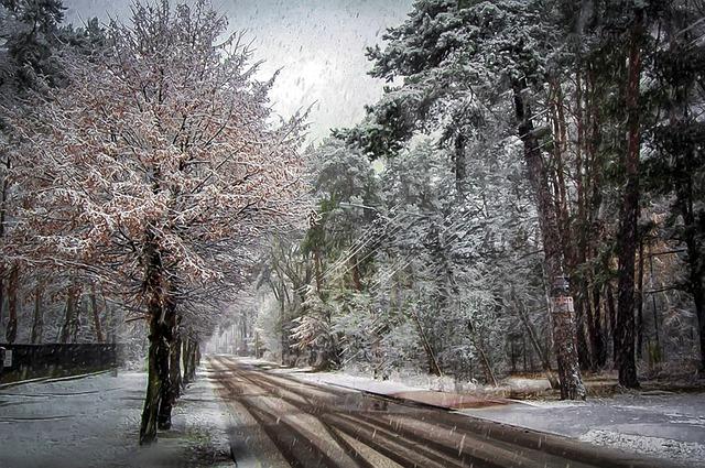 Дождь и мокрый снег не покидают Крым (прогноз погоды на 11 – 13 января)