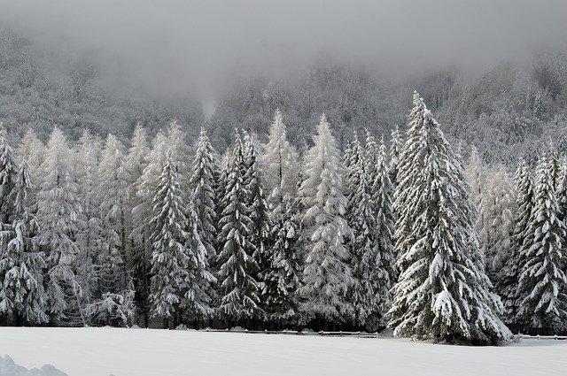 В крымских горах автомобиль с людьми застрял в снегу