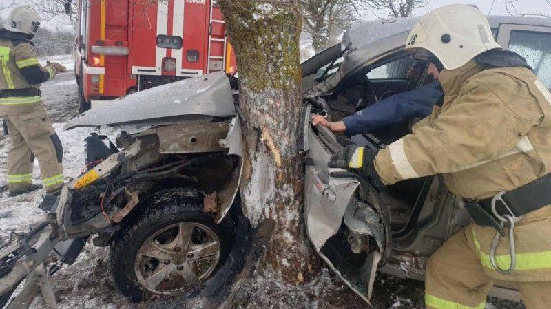 В Крыму автомобиль врезался в дерево