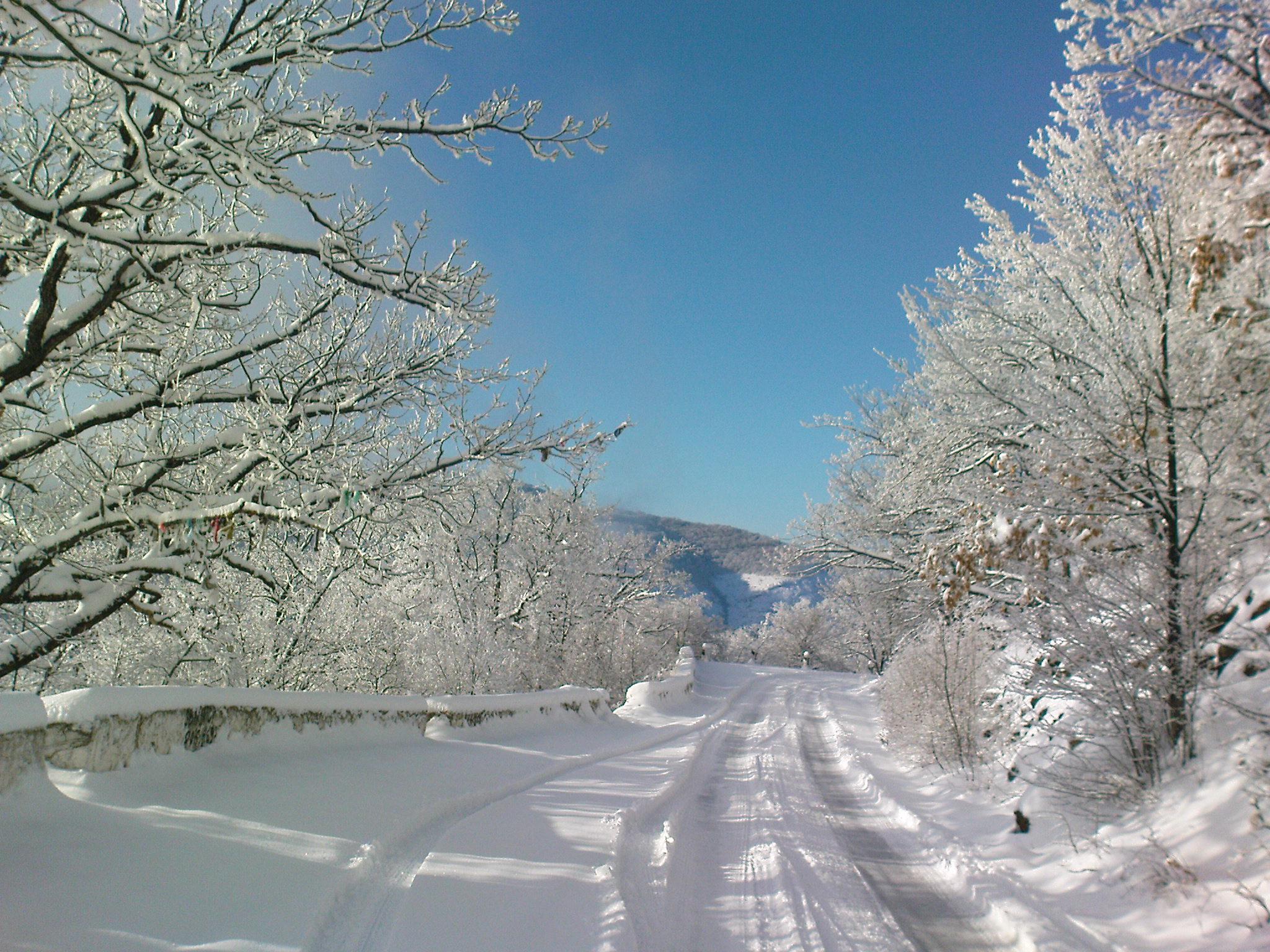 МЧС напоминает об ухудшении погодных условий 12-13 февраля
