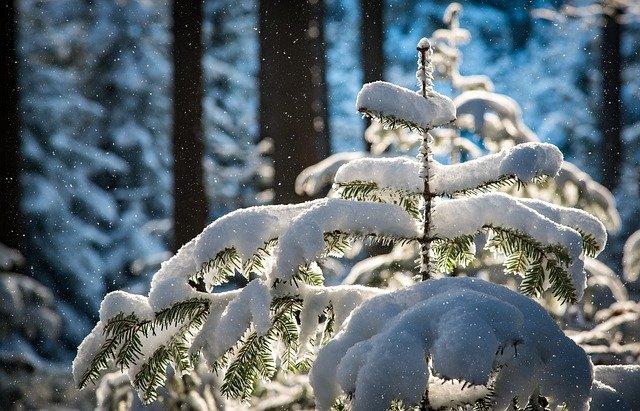 В восточном Крыму выпало рекордное количество снега (фото, видео)