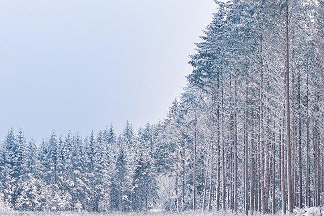 В Крым возвращается снежная зима