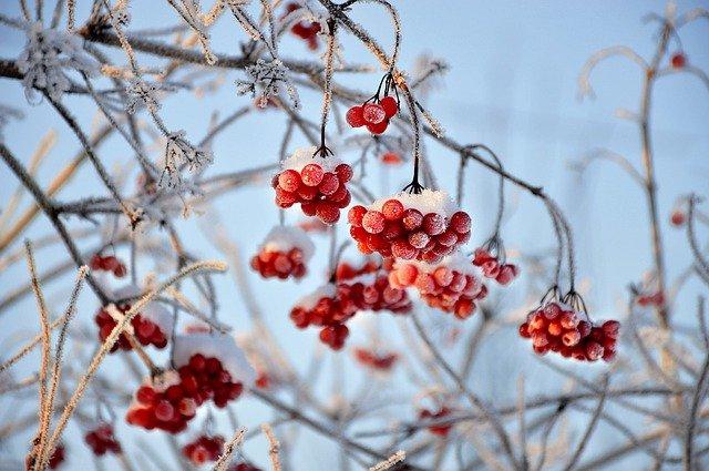 Крым и Севастополь накроет метелью и снегом