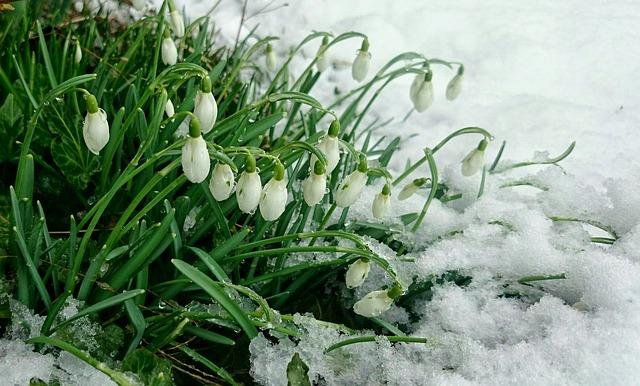 В Крыму и Севастополе прогнозируют снег и дожди