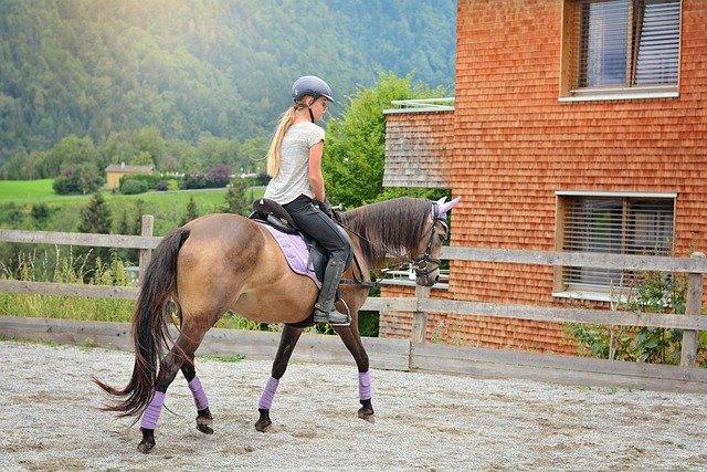 В Крыму осудили организатора конной прогулки, на которой девушка сломала позвоночник