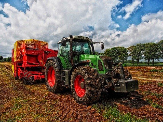 Крымчанка в 19 лет возглавила фермерское хозяйство и активно расширяет свое дело (фото)