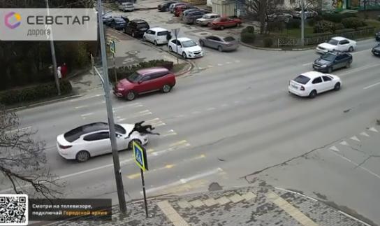 В Севастополе молодой человек попал под колеса иномарки
