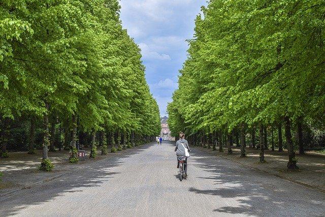 В Севастополе благоустроят еще один парк