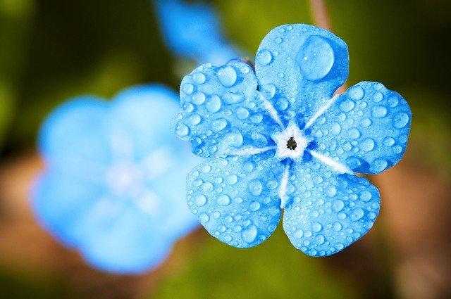 Синоптики рассказали о погоде в выходные 24 и 25 апреля в Крыму