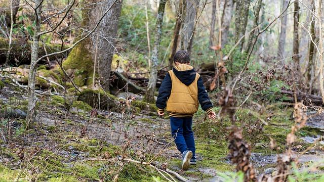 Внимание! В Крыму пропал 11-летний ребенок