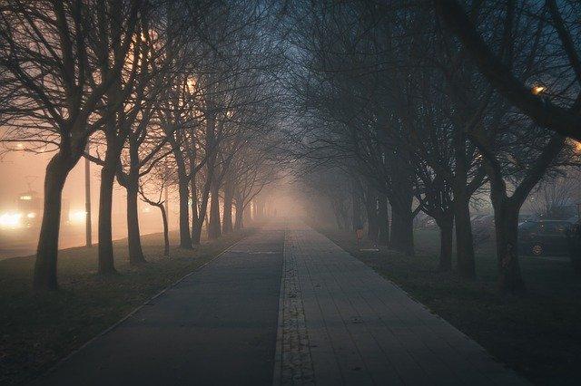 В Симферополе 18-летний парень избил прохожего в парке ради телефона