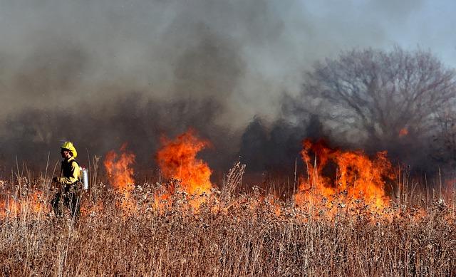 В Крыму продлили ограничения при посещении лесов