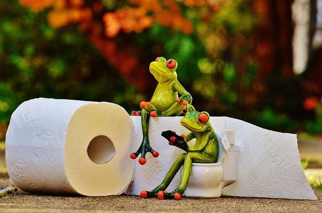 Опубликован список платных и бесплатных туалетов на ЮБК