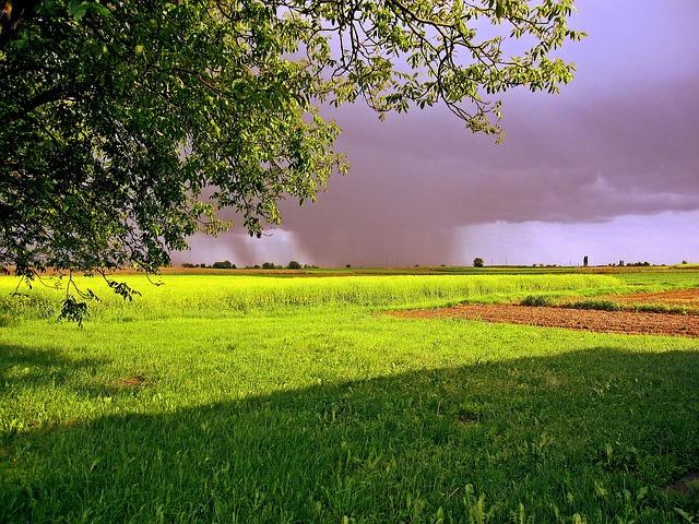 В Крыму 4 мая ожидаются дожди, до +20 градусов