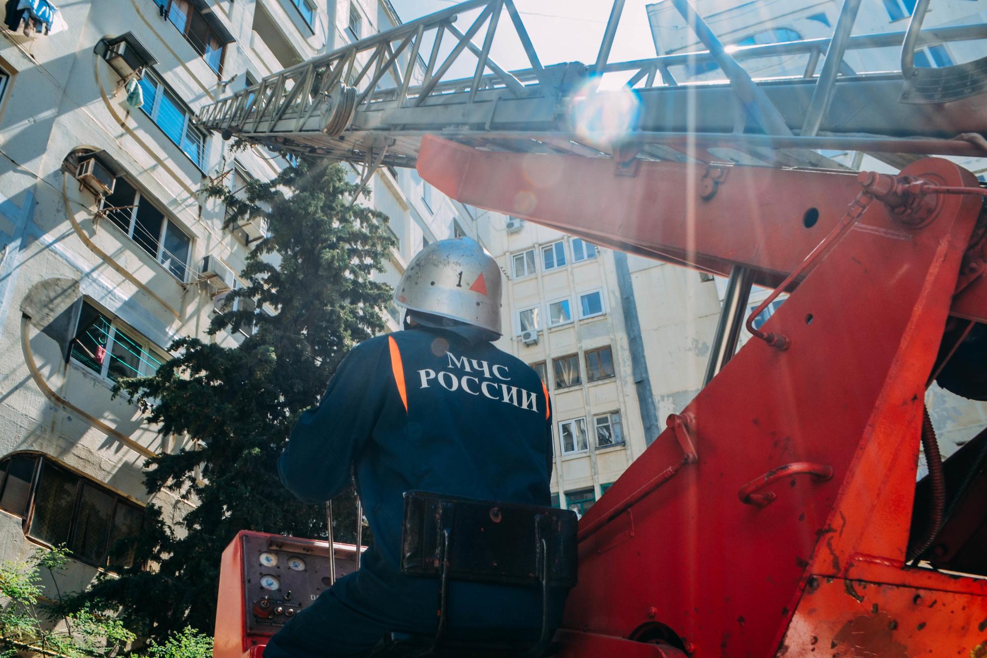 В Севастополе из горящей квартиры спасли черепаху (фото, видео)