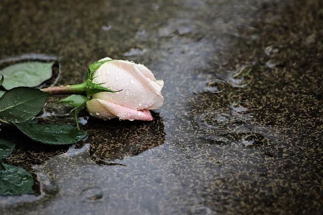 Отказалась вернуться: крымчанин убил бывшую жену, мать семерых детей