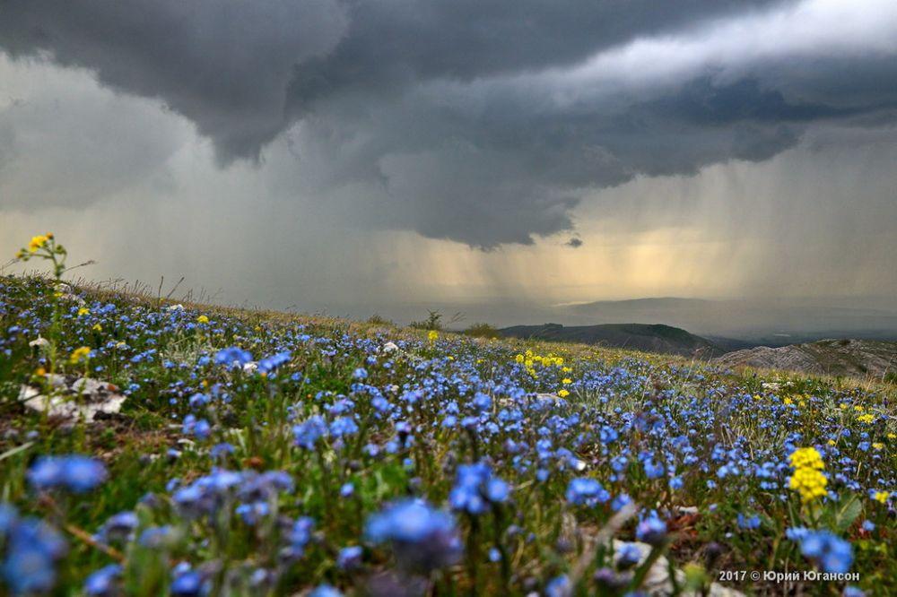 В Крыму 2 июня ожидаются кратковременные грозовые дожди