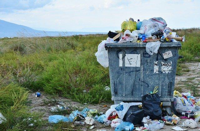 Севастополь утопает в мусоре из-за «фантазий» горхоза — общественница