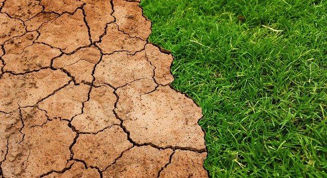 Планету ожидают новые тепловые рекорды из-за глобального потепления – ученые