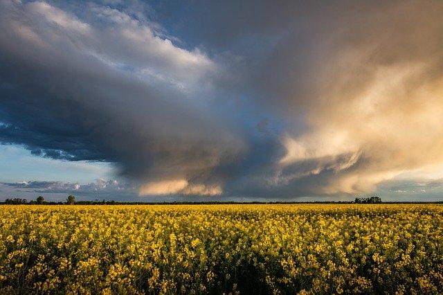 В Симферополе объявлено штормовое предупреждение