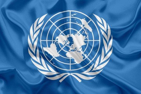 Россия не признает «Талибан», пока его не признает ООН — МИД РФ