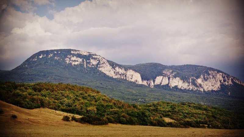 Спасатели эвакуировали туриста с горы в Крыму после укуса насекомого