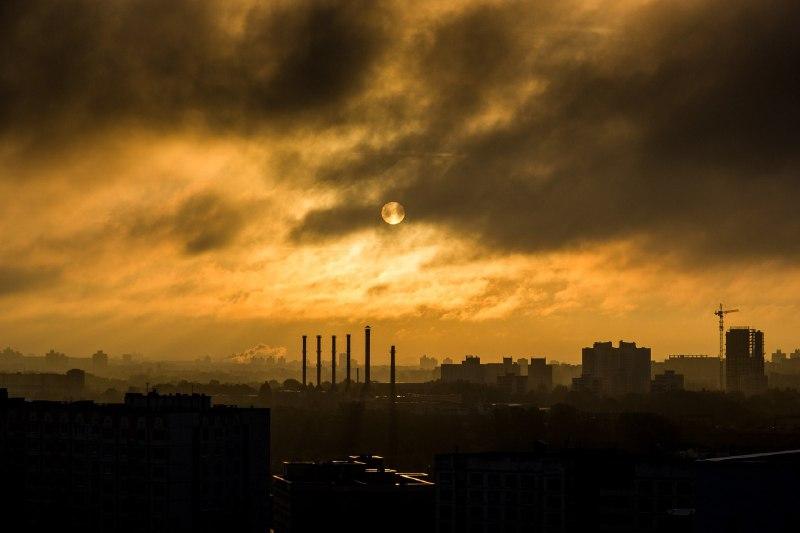 Красноярский чиновник назвал жалующихся на смог «ноющей кучей дерьма»