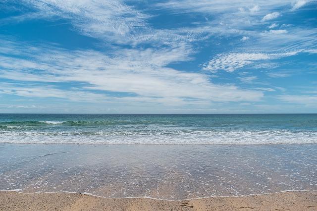 Температура воды в Черном море на 11 августа