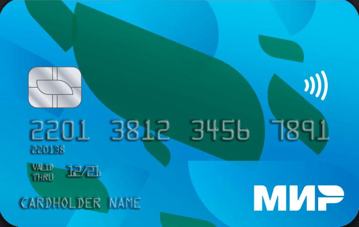 Национальную систему платежных карт готовят к продаже