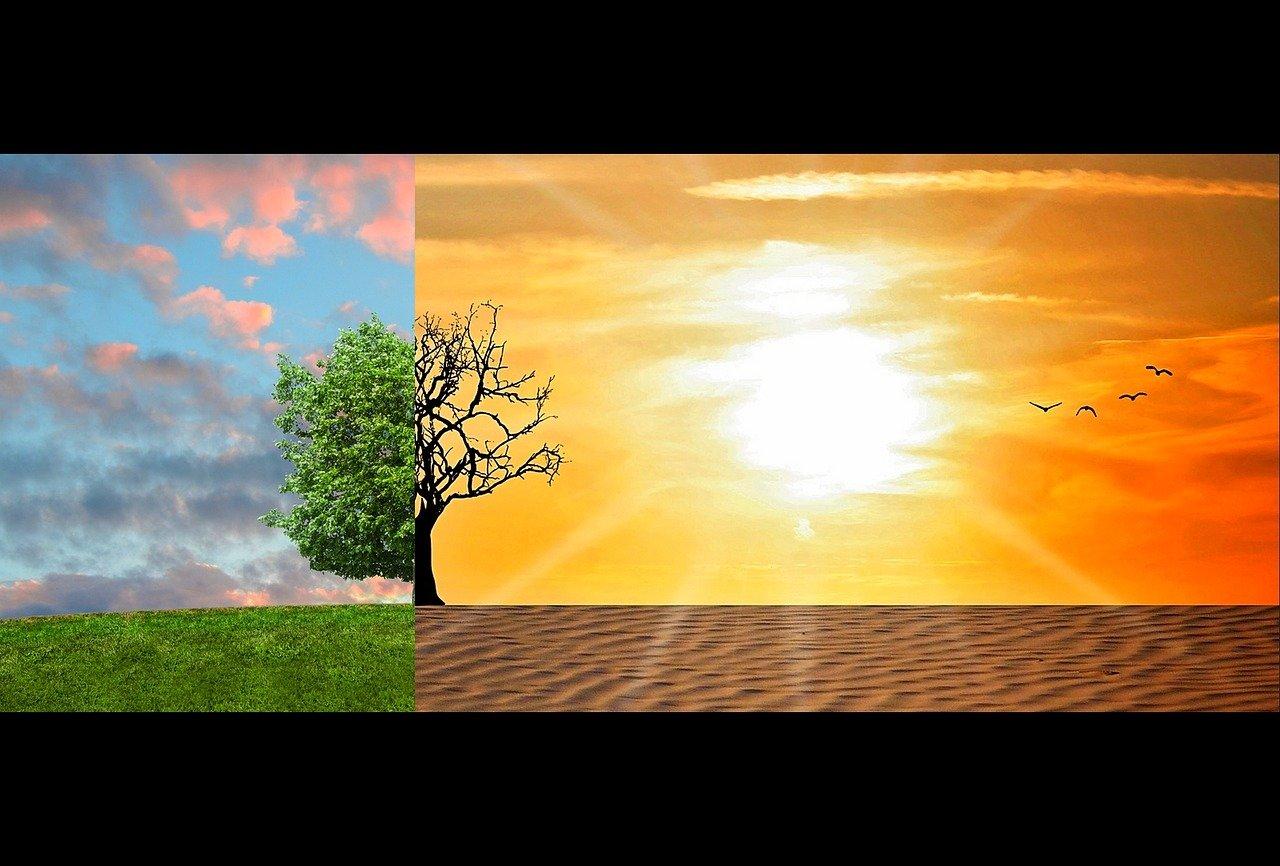 Ученые заявили о необратимых изменениях климата