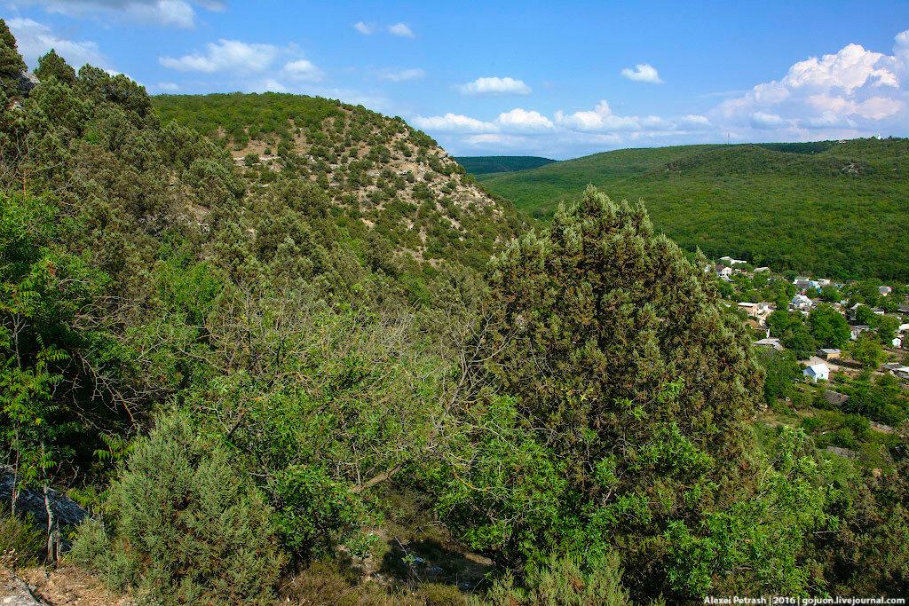 Сезон охоты открылся в Крыму, но не в Севастополе