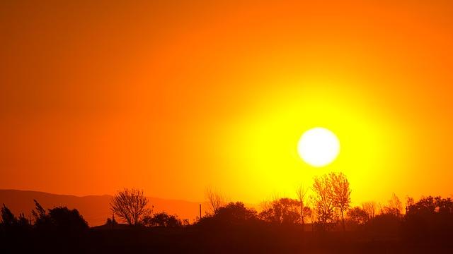 Июль 2021 года признали самым жарким за всю историю наблюдений