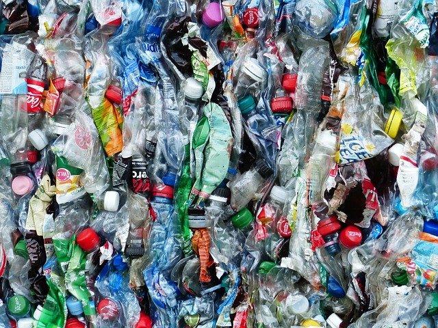 В Росприроднадзоре назвали катастрофой ситуацию с переработкой мусора в России